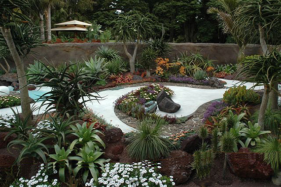 Small garden design ideas welcome to todd 39 s seeds for Australian native garden design ideas