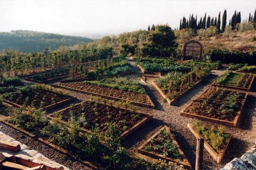 Helpful advice when starting an organic vegetable garden for Large vegetable garden design plans