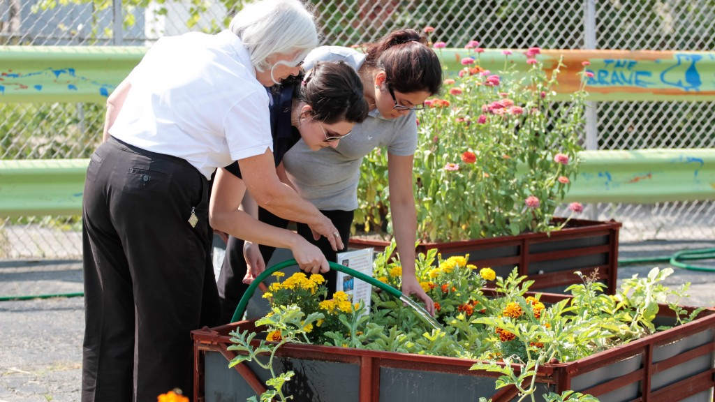 gm's initiative to save the earth with urban gardening in detroit, Garden idea