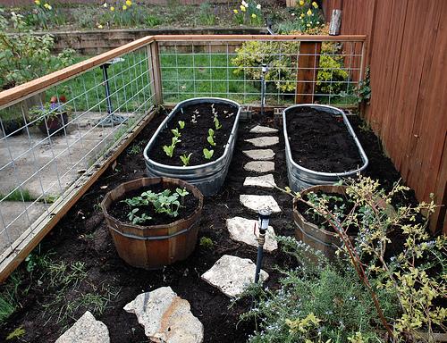 Superb Home Garden