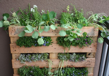 Container Gardening Your Way To Organic Gardening