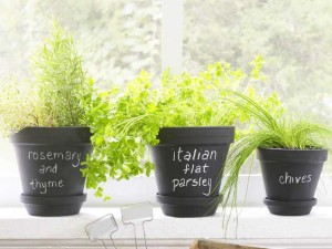 easy herb garden